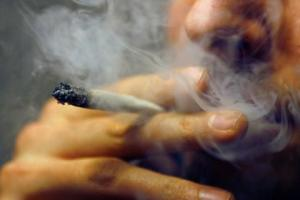 isap mariyuana