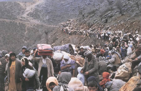 8-terrorism-migration